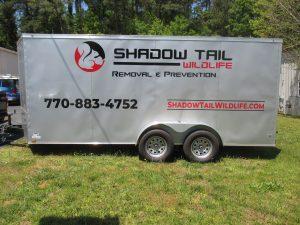 Shadowtail driv